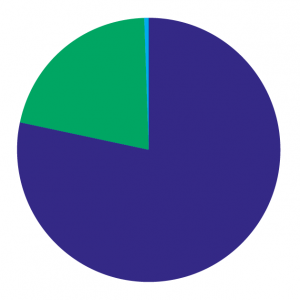 Pie chart: expenditure 2018-19