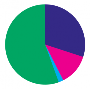 Pie chart: sources of income 2018-19